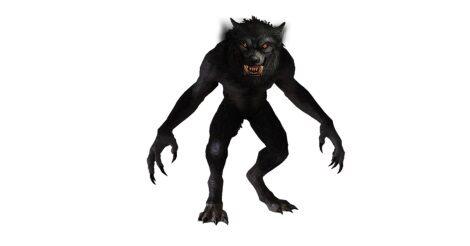 Vérfarkas, avagy farkasember: nem önszántából alakváltó